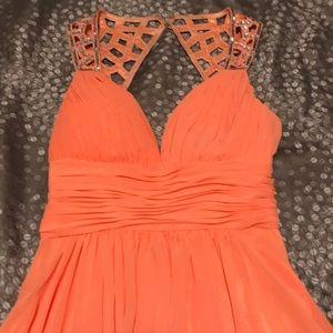 Bee Darlin Dress